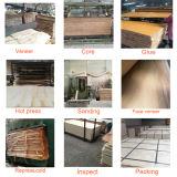 Classe material da decoração D/D do núcleo do Poplar da madeira compensada do vidoeiro