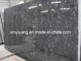 Countertops와 Vanity Tops를 위한 Polished Volga Blue Granite Slabs