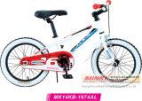 Сплав детей на горных велосипедах (MK14KB-1674)