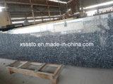 Pedra natural Blue Pearl ladrilhos de granito e lajes