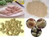 중국 제조자 채식주의 짜임새 간장 단백질 기계