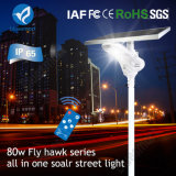 luz de rua solar do diodo emissor de luz 15-80W com painel solar