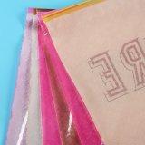 De uitstekende kwaliteit Afgedrukte Plastic Zakken van de Ritssluiting voor Kleding (flz-9220)