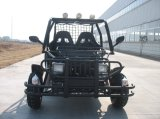 4 Rad und 2 Seat Automatic Dune Buggy (KD 200GKH-2)