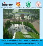 Geomembrana de HDPE usada en el revestimiento del estanque de piscicultura