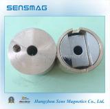 Aimants NdFeB magnétique permanent Assy pour différentes applications
