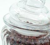 Vasi di Contaiers dei condimenti di Ribbled Kithcen che cucinano il POT della cantina