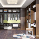 Luxury Bedroom /Cloakroom Furniture Cabinet with Pantry Closet Cabinet