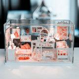 Cas d'exposition acryliques d'entreposage en boîte-cadeau de faveur de mode avec la base