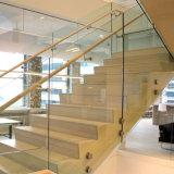 De commerciële & Woon BuitenKant Opgezette Balustrade van het Glas met het Traliewerk van het Glas van het Afstand houden van het Roestvrij staal