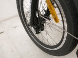 Колесо магния складывая электрический Bike для сбываний (FR-TDN16Z)