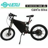 炭素鋼の電気バイクフレームの自転車フレーム