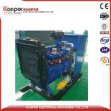 Weichai 10KW a 32 kw conjunto gerador de gás natural com bom preço