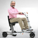 3つの車輪の電気スクーターのFoldable Trikkeの移動性のスクーターの電気自転車