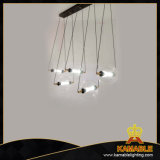 Einfacher Dekoration-Raum-Farbton-hängende Glaslampe (1238S1-5)