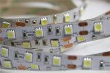 alta iluminación 2835SMD de la representación LED de 24V 6000K