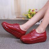 여자 가죽 신발 춤 단화 (FTS1020-18)의 신식