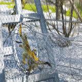 Embout ou maille nouée de corde de zoo de câble d'acier inoxydable