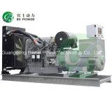 200kVA grupo electrógeno diesel Perkins con Marathon Alternador (LPM160)