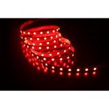 LED RVB étanche SMD5050 pour le marché des feux de corde/décoration de l'hôtel/Boîte à lumière