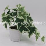 Les feuilles des plantes artificielles à bas prix le lierre fabricant