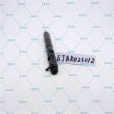 Ejbr02501z Delphi geläufige Schiene Inyector Dieseldüse Ejbr0 2501z und Ejb R02501z