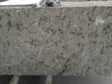 Galaxy blanc carreaux de granit poli-dalles&comptoir