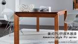 American Haut de la peinture mat transparent pour le bois