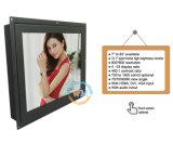 Vlakke LCD van 12 Duim van het Scherm Slanke Monitor met Hoge Helderheid (mw-123MEH)