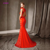 Spitze-rückseitiges Sleeveless Fishtail Abend-Kleid