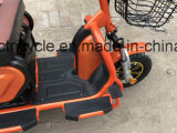 초로 사람을%s Foldable 시트 3 바퀴 전기 스쿠터 Trike
