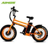 高速750W脂肪質のタイヤ4.0の雪浜の電気自転車