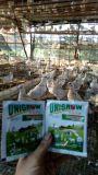 Unigrow скота и птицы темпы роста по селекции ВЯХИРЬ