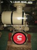 (NT855-C250) de Dieselmotor van Chongqing Ccec Cummins voor de Motor van de Bouw