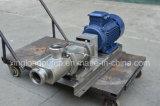 Qualitäts-Pumpen-Edelstahl-Pumpe-Gesundheitliche Pumpe-Doppelschrauben-Pumpe