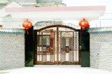 De buiten Poort van de Omheining van het Smeedijzer van de Veiligheid Decoratieve