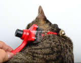 Оптовая щетка любимчика инструментов холить гребня кота собаки