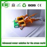 36V 10ah e-Fiets Pak van de Batterij van de Batterij het Li-Ionen voor Mini e-Fiets Elektrische Vouwende Fiets in China met de Lader van de Batterij
