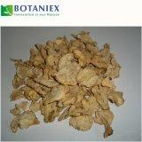 Gmp-natürliche chinesische männliche Vergrößerer-Energie-Zusatzpille-Kapsel