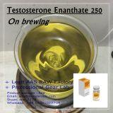 Premade beendete Steroid Einspritzung-Testosteron Enanthate 250, 300, 400, 500mg für Bodybuilding
