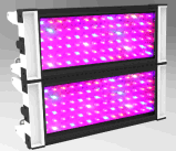 El espectro completo LED de la alta luz eficiente agrícola de la planta crece la luz