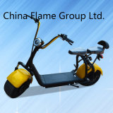 10000W 60V/30Ah Smart City Road Electric Scooter Vertical