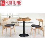 Het lichtgroene Moderne die Meubilair van het Restaurant met de Lijst wordt geplaatst van de Benen van het Roestvrij staal (foh-BCA08)