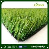 Het Modelleren van de Fabrikant van Jiangsu Direct Gras voor Tuin