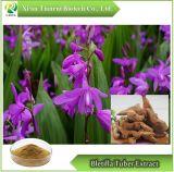 Extrair/Bletilla Bletilla tubérculo extrato de raiz/Rhizoma Bletillae Extraia o extrato da planta
