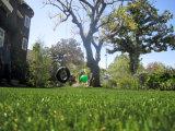 Revestimento protetor do plutônio de quatro cores que ajardina a grama para o jardim