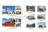 El gas natural el biogás cama grupo electrógeno de gas de carbón