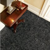 黒い花こう岩の輝きの無光沢の終わりの床のセラミックタイル(SD10240)