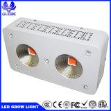熱い販売の工場価格3500K 6500Kの穂軸完全なスペクトルLEDはライト300Wを育てる