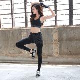 Active les femmes jogging costumes personnalisé de vêtements de sport Commerce de gros